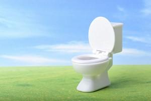 日本を初めて訪れた中国人観光客の多くは街の清潔さや公衆トイレの清潔さに一様に驚くと言われる。しかし、中国人からすると洋式トイレは「お尻が便座に直接触れる」ので衛生的ではないと感じる人が多いようで、「なぜ日本の公衆トイレは洋式ばかりなのか」と不思議に思うらしい。(イメージ写真提供:123RF)