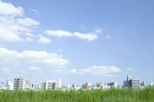 中国のポータルサイトに「どうして日本はこんなにきれいなのか」とし、気候や習慣とともに日本の経済発展を理由として挙げ解説する記事が掲載された。(イメージ写真提供:123RF)