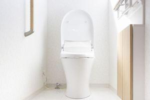 中国のポータルサイトに、中国で「これはわが国でも導入すべきだ」と賞賛されてきた日本のトイレの構造が、日本ではすでに淘汰され始めているとする記事が掲載された。(イメージ写真提供:123RF)